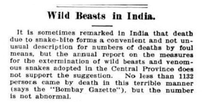 """Wild Beasts in India."" Australian Town and Country Journal (1900, November 17), p.38. Newspaper article found in Trove reproduced courtesy of the National Library of Australia."