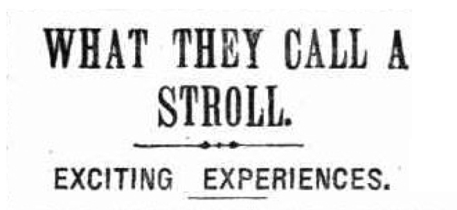 WHAT THEY CALL A STROLL. (1907, June 8), Sydney Evening News, p. 12. Newspaper article found in Trove reproduced courtesy of the National Library of Australia.